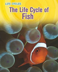 The Life Cycle of Fish by Darlene R Stille