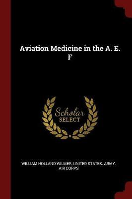 Aviation Medicine in the A. E. F by William Holland Wilmer image
