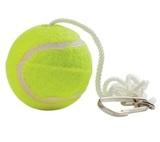 Pole Tennis Spare Ball