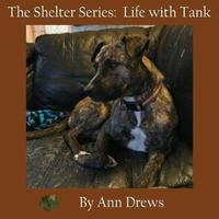 The Shelter Series by Ann Drews image