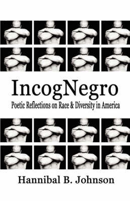 Incognegro by Hannibal B Johnson