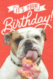 Woof & Purr Greeting Card - Birthday Ice Cream