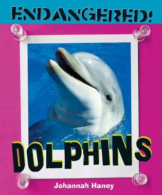 Dolphins by Johannah Haney