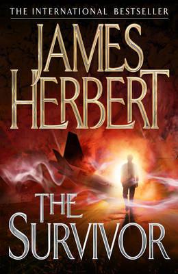 The Survivor by James Herbert image