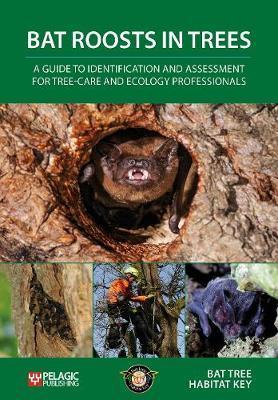 Bat Roosts in Trees by Bat Tree Habitat Key
