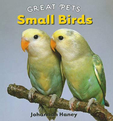 Small Birds by Johannah Haney