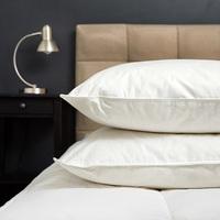 Royal Comfort 1000GSM Goose Pillow Twin Pack image