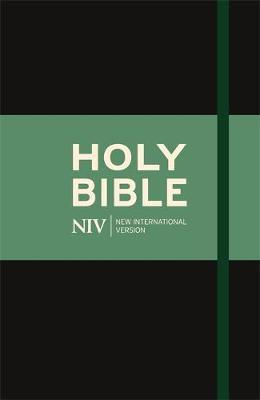 NIV Thinline Cloth Bible by New International Version image
