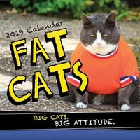 2019 Fat Cats Wall Calendar by Sourcebooks