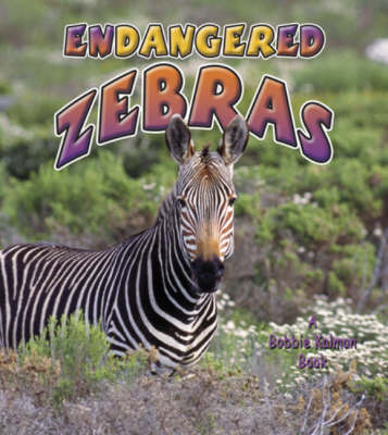 Endangered Zebras by Kelley MacAulay