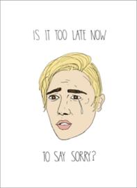 Bieber Sorry - Greeting Card