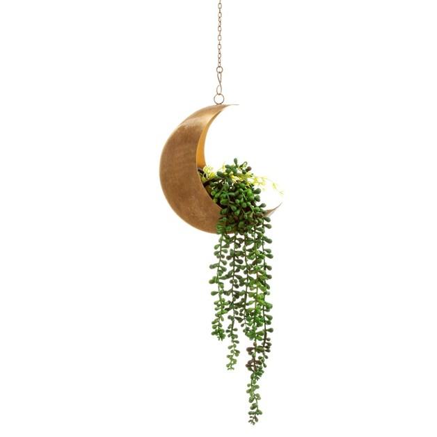 Sass & Belle: Celestial Moon Hanging Planter