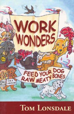 Work Wonders by Tom Lonsdale
