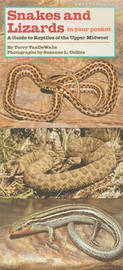 Snakes and Lizards in Your Pocket by Terry VanDeWalle image