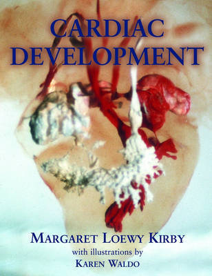 Cardiac Development by Margaret Loewy Kirby