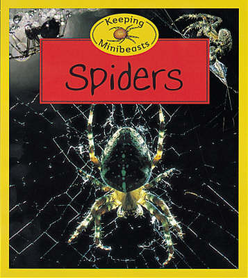 Spiders by Chris Henwood image