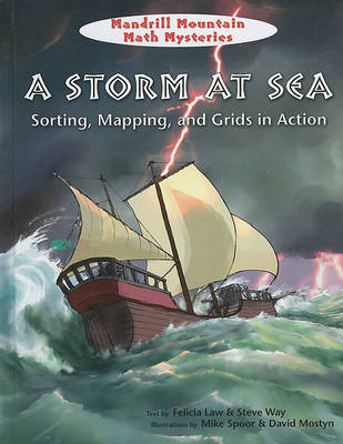 A Storm at Sea by Felicia Law