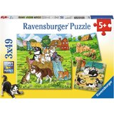 Ravensburger: Cats and Dogs - 3x49pc Puzzle