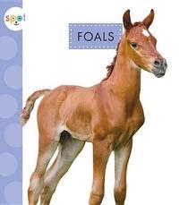 Foals by Anastasia Suen