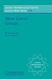 Skew Linear Groups by M. Shirvani