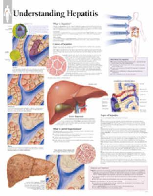 Understanding Hepatitis image