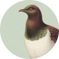 100 Percent NZ - Kereru Ceramic Coaster