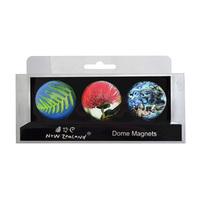 NZ Magnet Dome Set (3pc) image