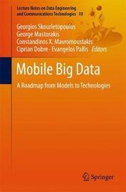 Mobile Big Data image