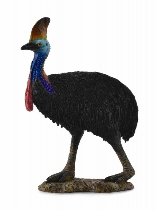 CollectA - Southern Cassowary (L)