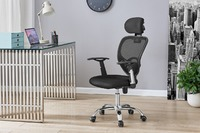 Ergolux: Everyday Ergonomic Chair (Black)
