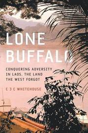 Lone Buffalo by Christopher Whitehouse