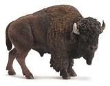 Schleich - American Bison