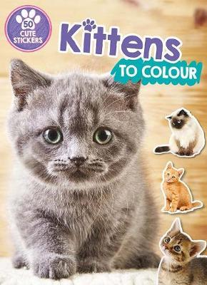 Kittens to Colour by Parragon Books Ltd image