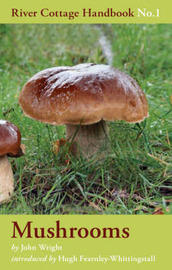 Mushrooms: River Cottage Handbook No.1 by John Wright image