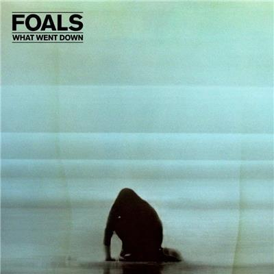What Went Down (LP) by Foals