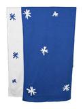 Babu: Reversible Cotton Blanket - Blue/White Stars