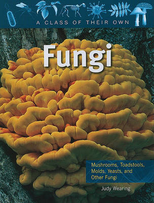 Fungi - A Class of their Own by Judy Wearing image
