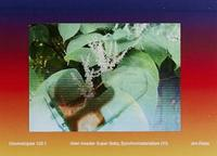Alien Invader Super Baby (Synchromaterialism IV) by Jim Ricks image
