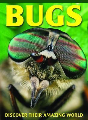 Bugs by Barbara Taylor image