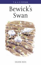Bewick's Swan by Eileen Rees