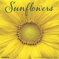 Sunflowers 2019 Wall Calendar by Willow Creek Press