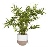 Present Time: Native Plant Pot - White (Large)