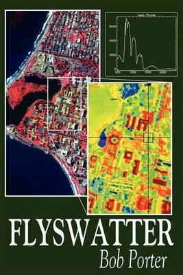 Flyswatter by Bob Porter