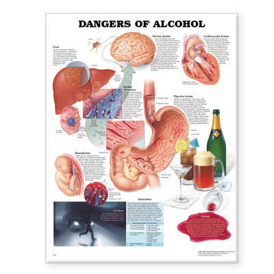 Dangers of Alcohol Anatomical Chart image