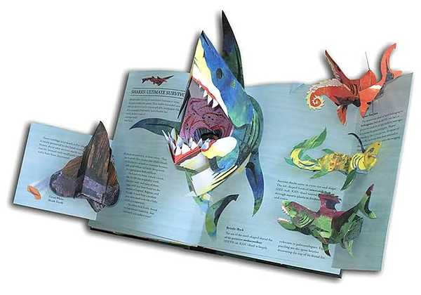 Encyclopedia Prehistorica: Sharks and Other Sea Monsters by Matthew Reinhart image