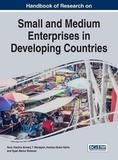 Handbook of Research on Small and Medium Enterprises in Developing Countries by Noor Hazlina Ahmad