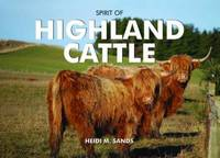 Spirit of Highland Cattle by Heidi M. Sands