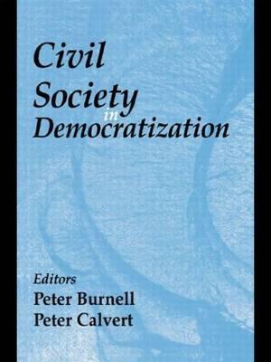 Civil Society in Democratization image
