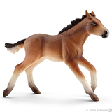 Schleich - Mustang Foal