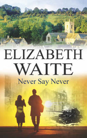 Never Say Never by Elizabeth Waite image